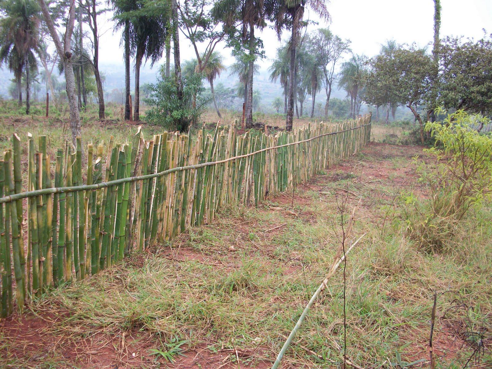 unsere kleine farm | parakay - news | seite 14, Garten ideen